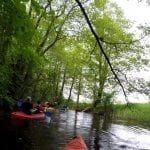 Spływy kajakowe rzeka drawa