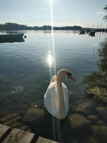Jezioro Drawsko WAJK
